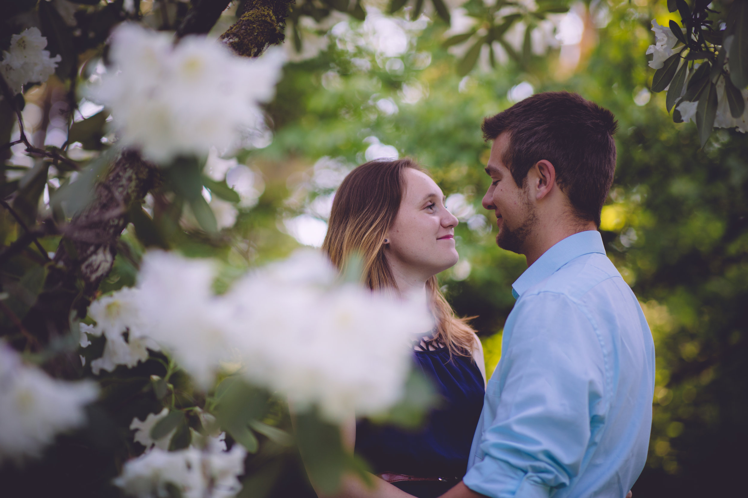 A Spring Engagement -