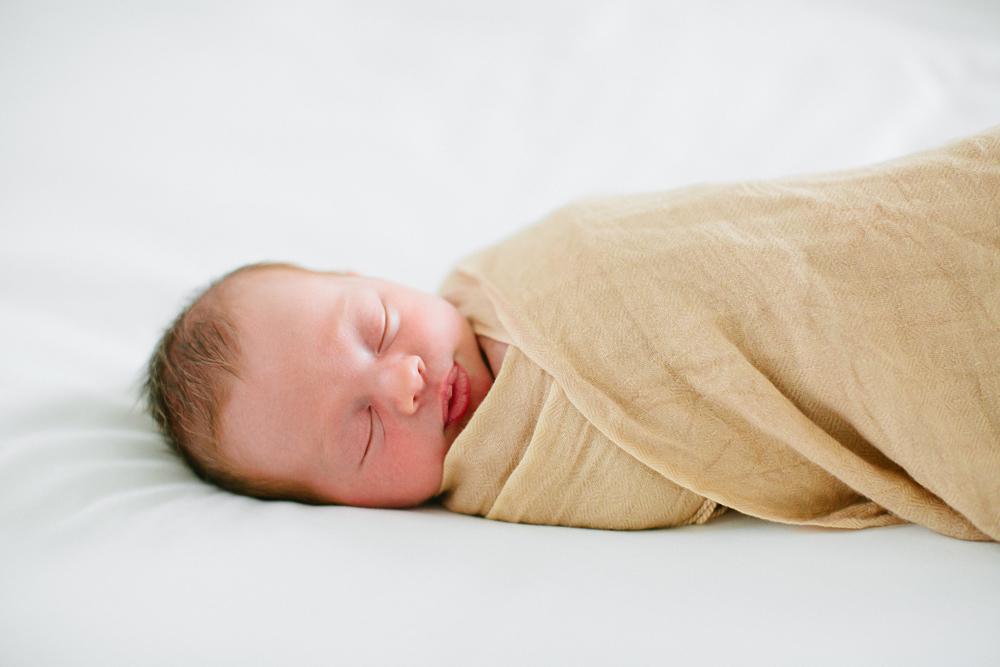 Baby_Rose-14.jpg