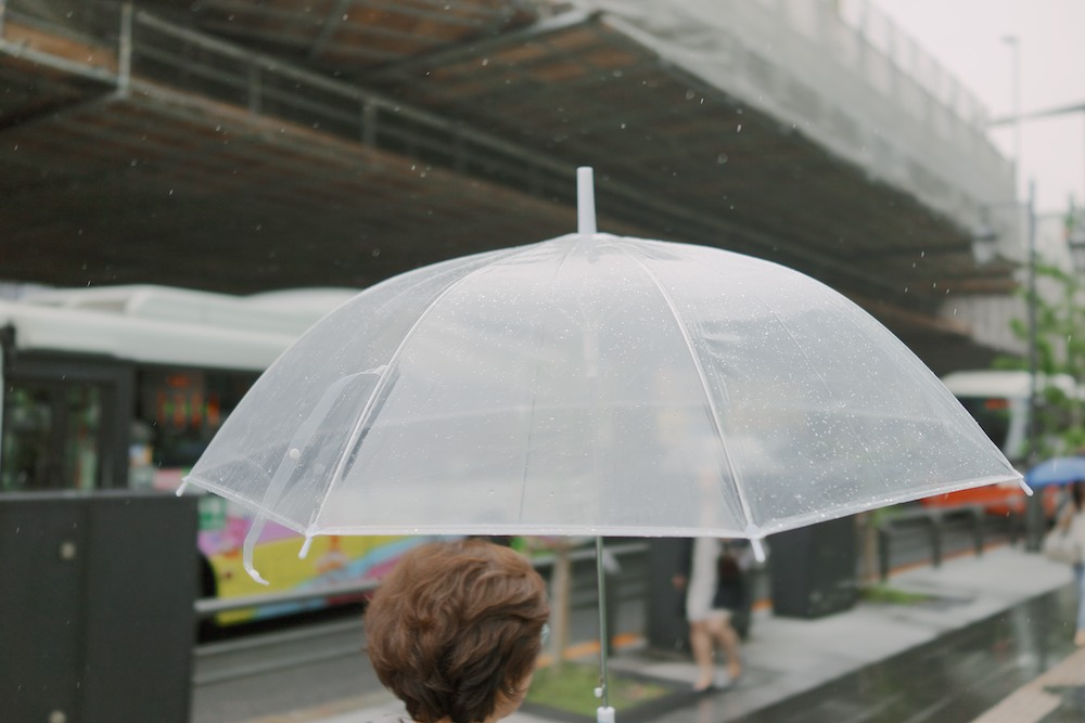 These semi-disposable clear umbrellas are everywhere in Japan.