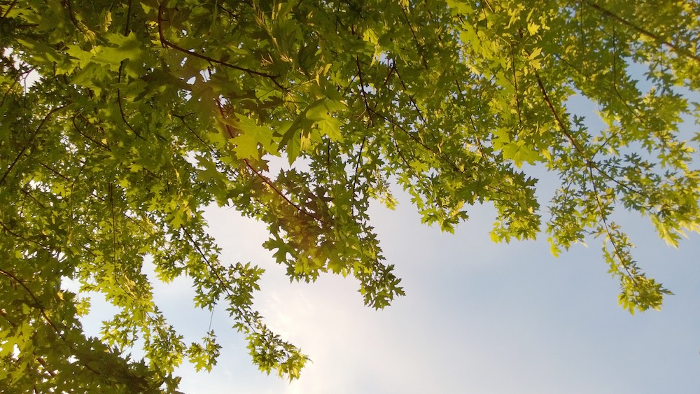 Lumia 920_20130615_013.jpg