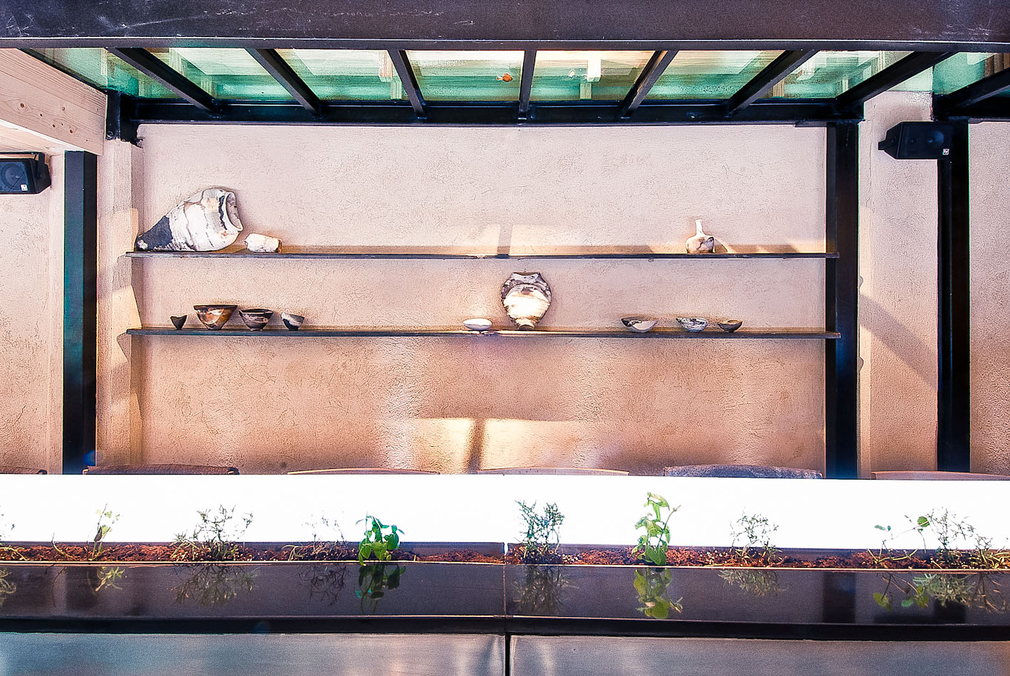 צילום קולינריה    צילום מסעדות ויחסי ציבור    צילום אוכל    סטודיו איתי אבירן