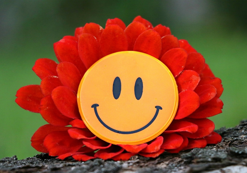 smile-1539196_1280 (2).jpg