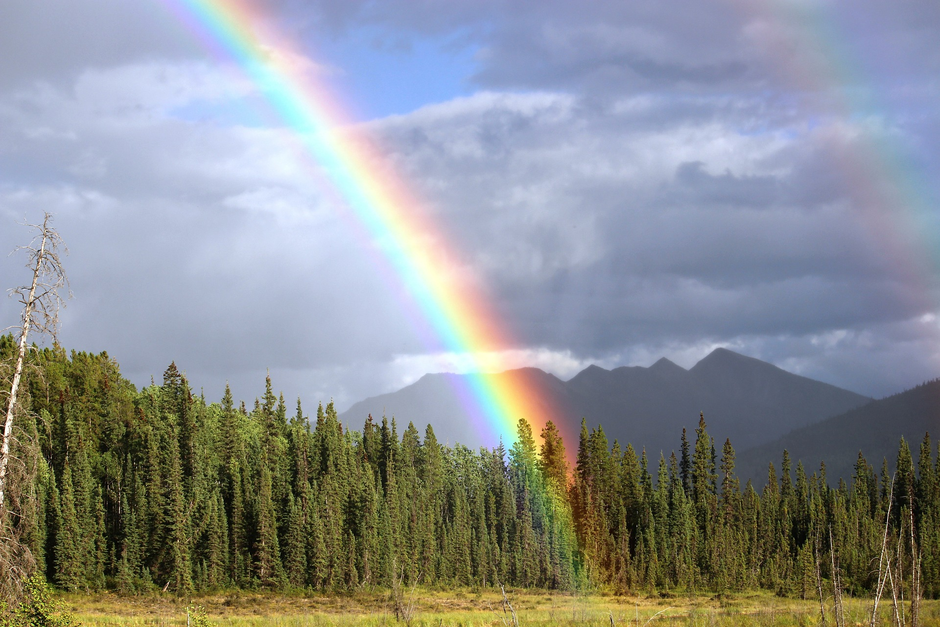 rainbow-436183_1920.jpg