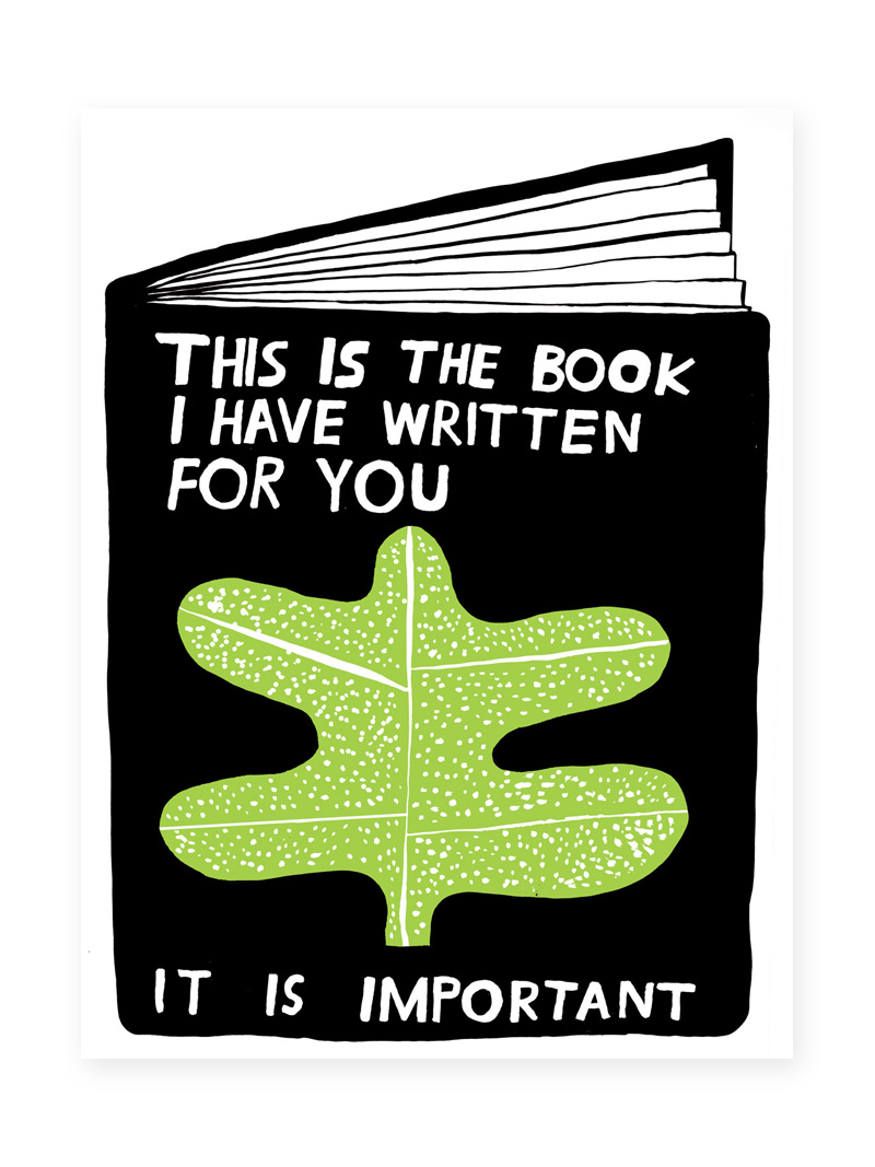 this-is-the-book-I-have-written-for-you.jpg