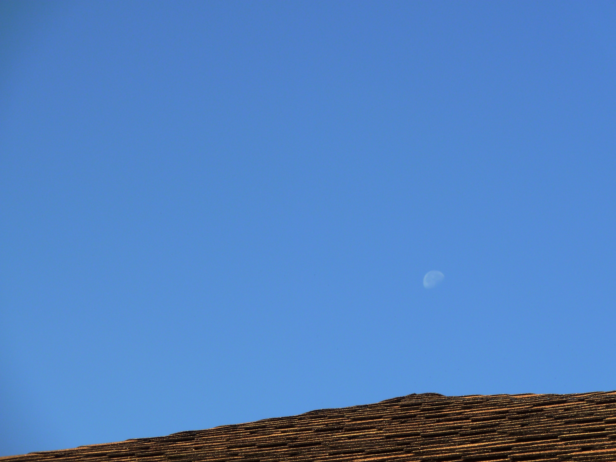 Rooftop under a waning moon.