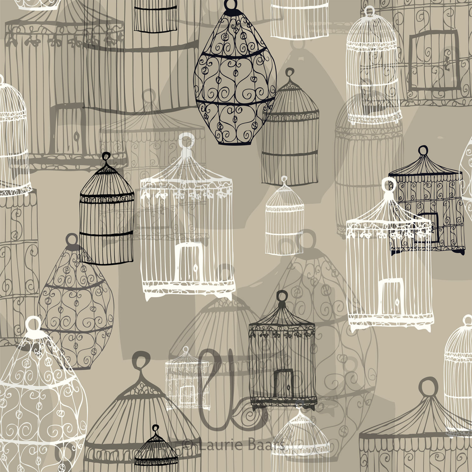 Birdcages by Laurie Baars