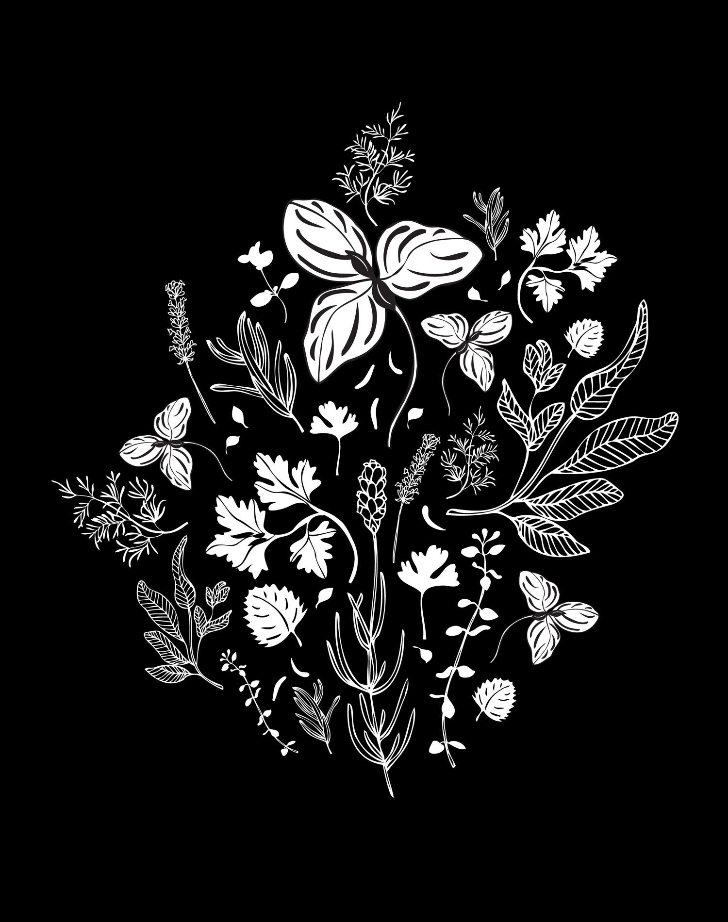 Herbs - Laurie Baars