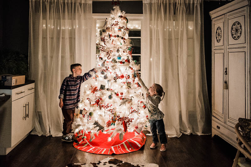 Nikon D750, 24-70mm lens, 2.8 1/100 ISO 3200- positioning the kids toward the tree is what makes this photo work.