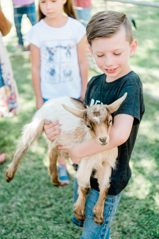 Our library hosted a free petting zoo last year and our kids still talk about it as one of their favorite things we did!