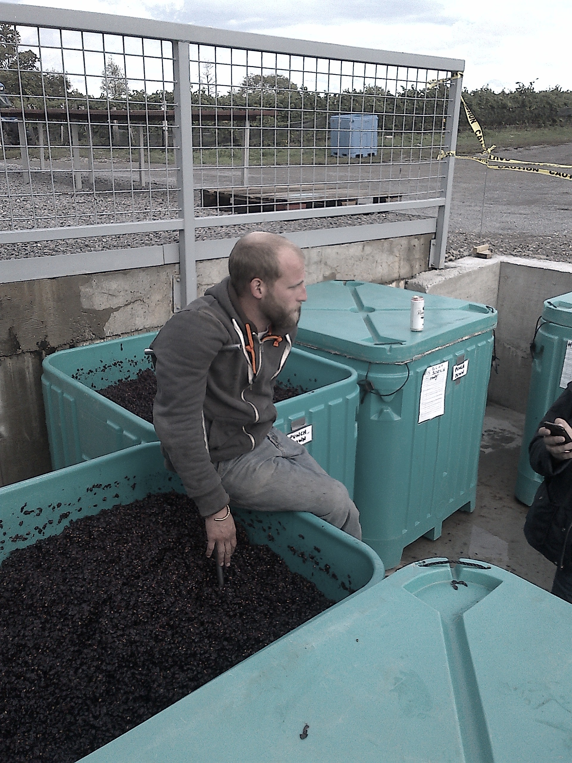 Assistant winemaker Richard Charnock taking a break from punch-downs.
