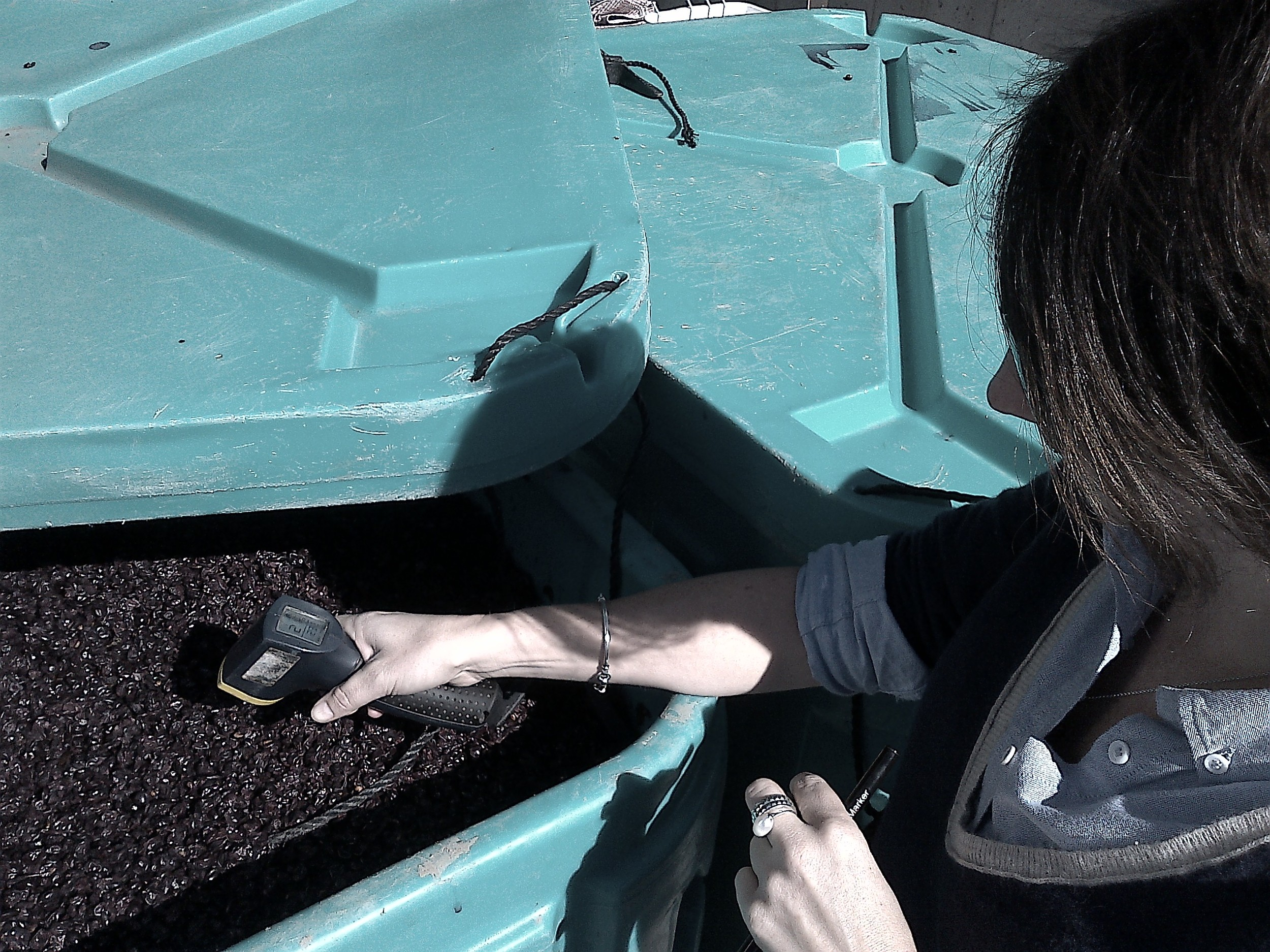 Nicola Sommerville, manager and wine buyer at Liberty Origin in Toronto, taking the temperature of the ferments...