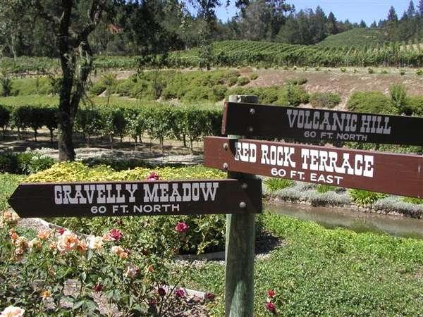 Diamond Creek's vineyards, the first on Diamond Mountain.
