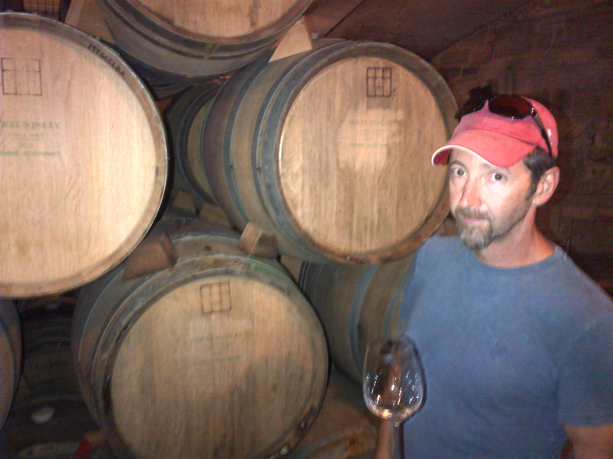 Barrel tasting Chardonnays with Paul Pender in the cellar at Tawse.
