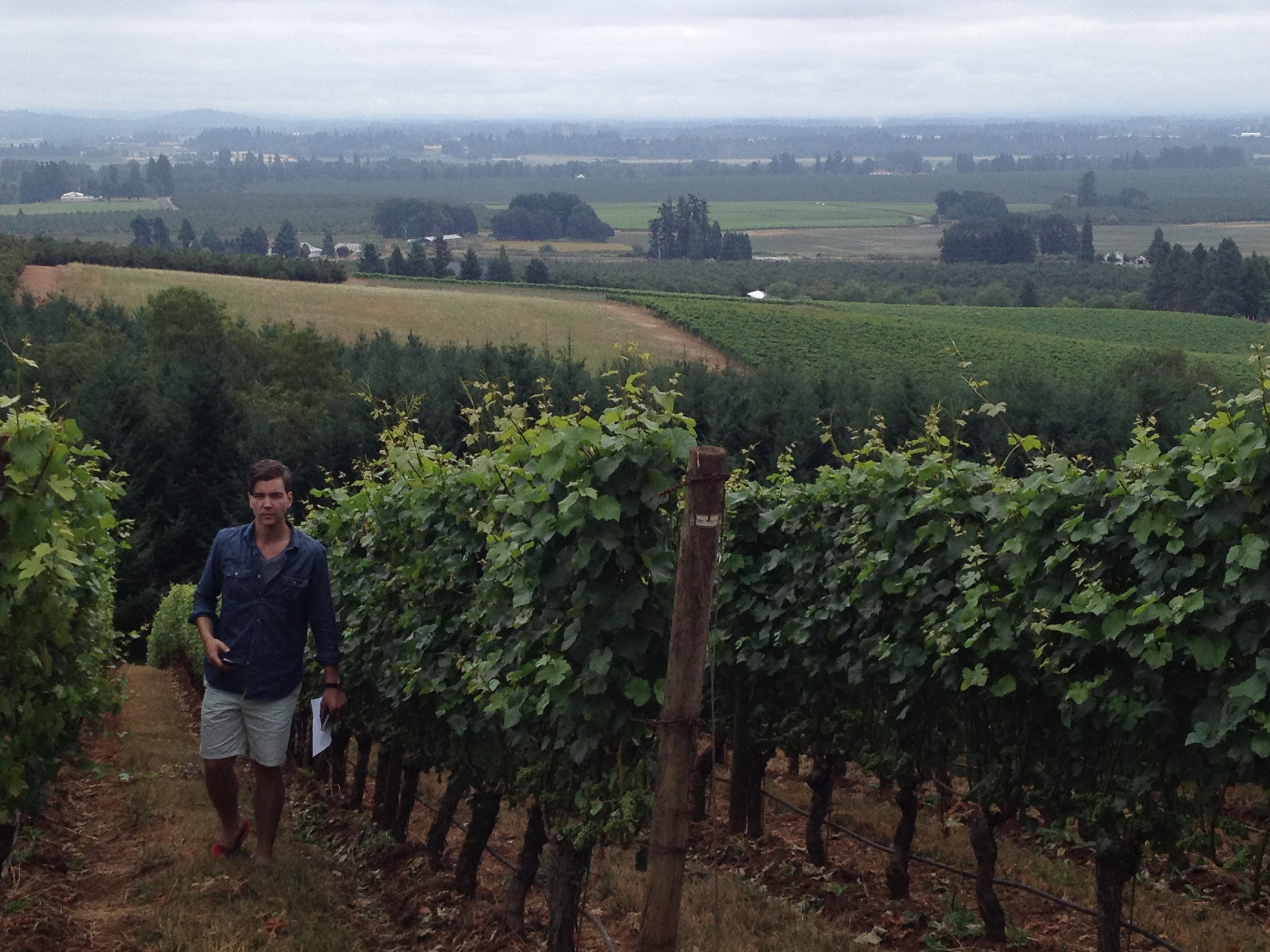 Climbing the steep slopes of the Renegade Ridge vineyard.
