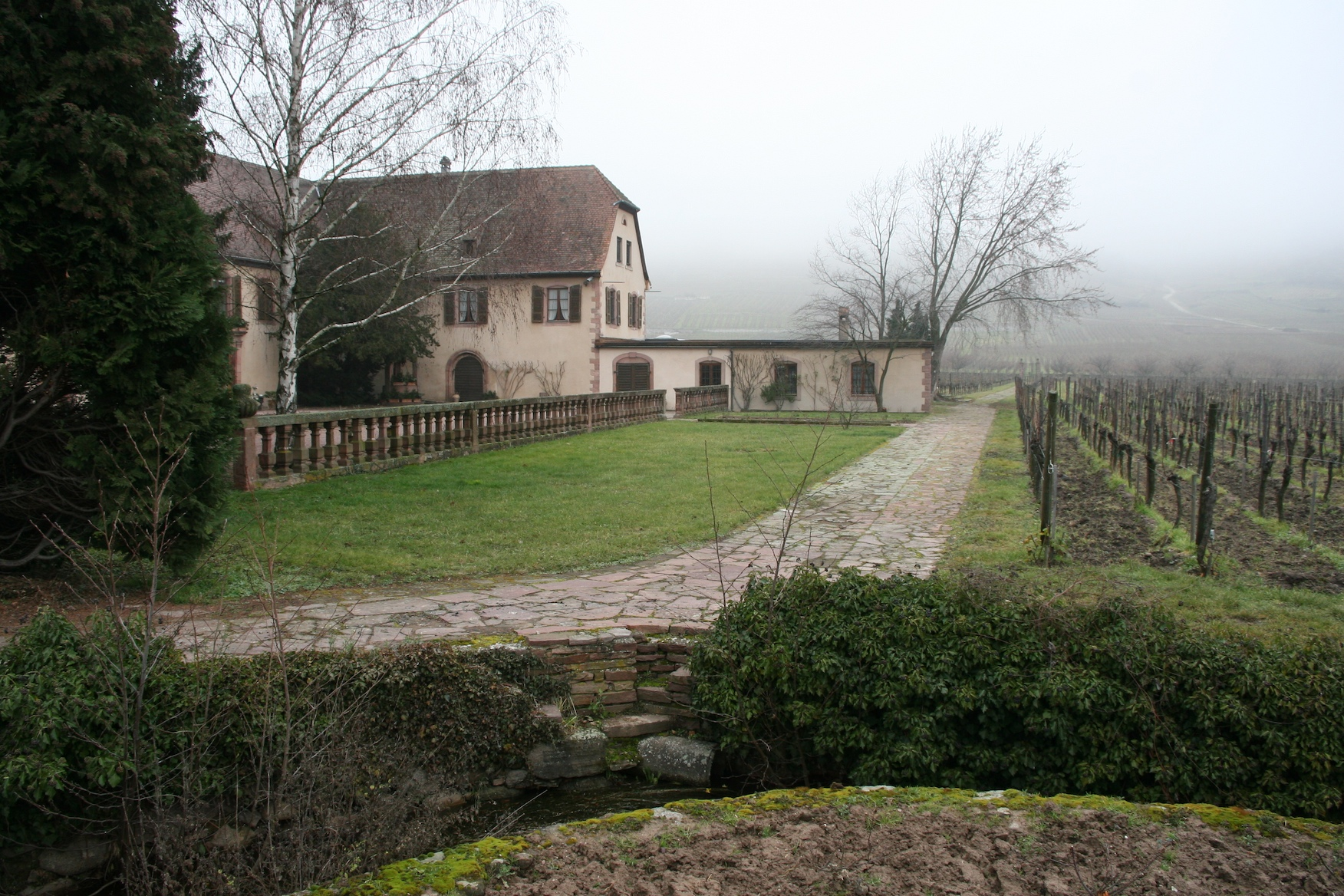 View of the Domaine and vineyards from the gates.