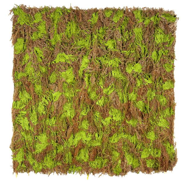 green-frond-strokes.jpg
