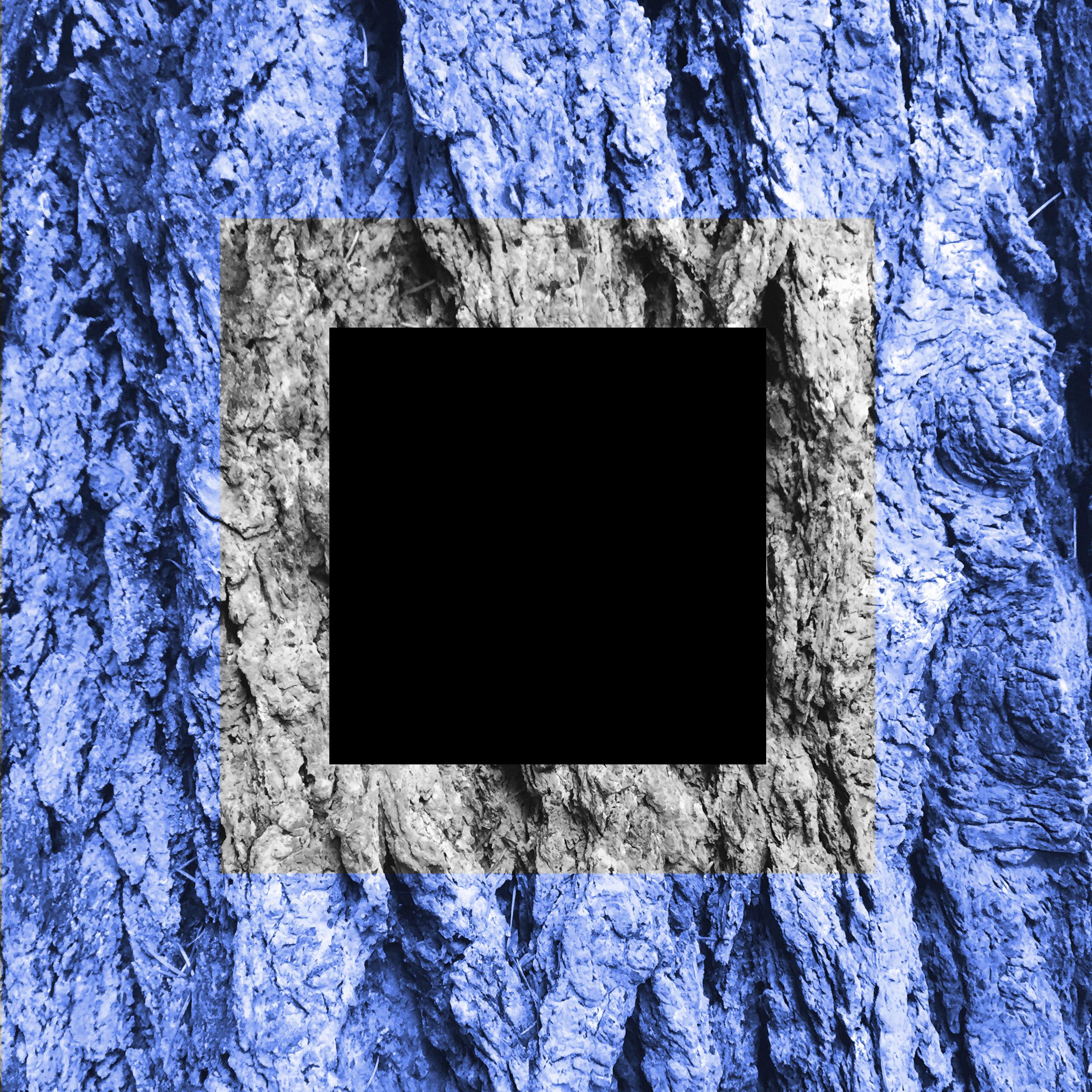 EnigmaSQ-01.jpg