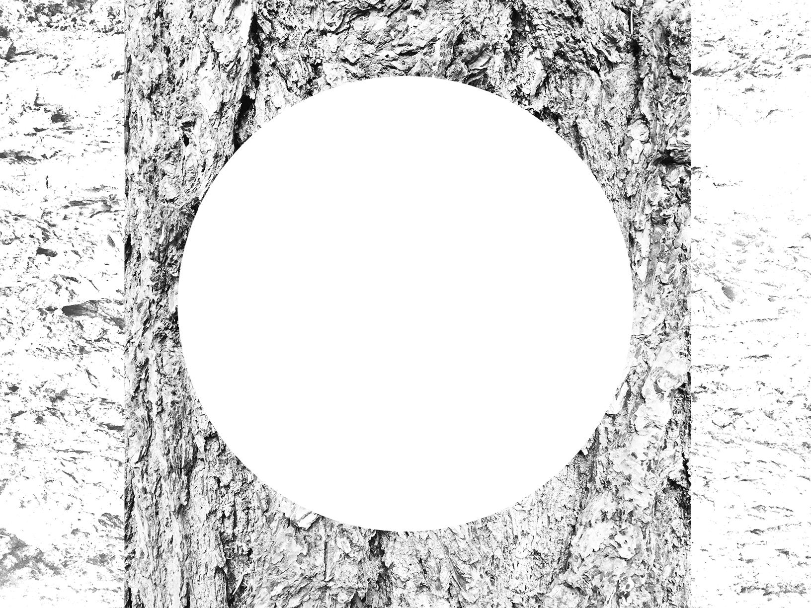 white-07.jpg