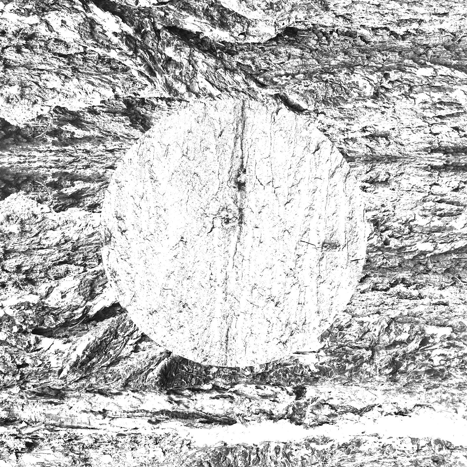 white-13.jpg
