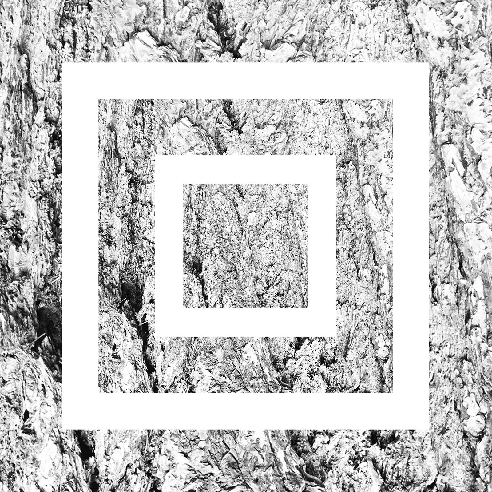 white-17.jpg