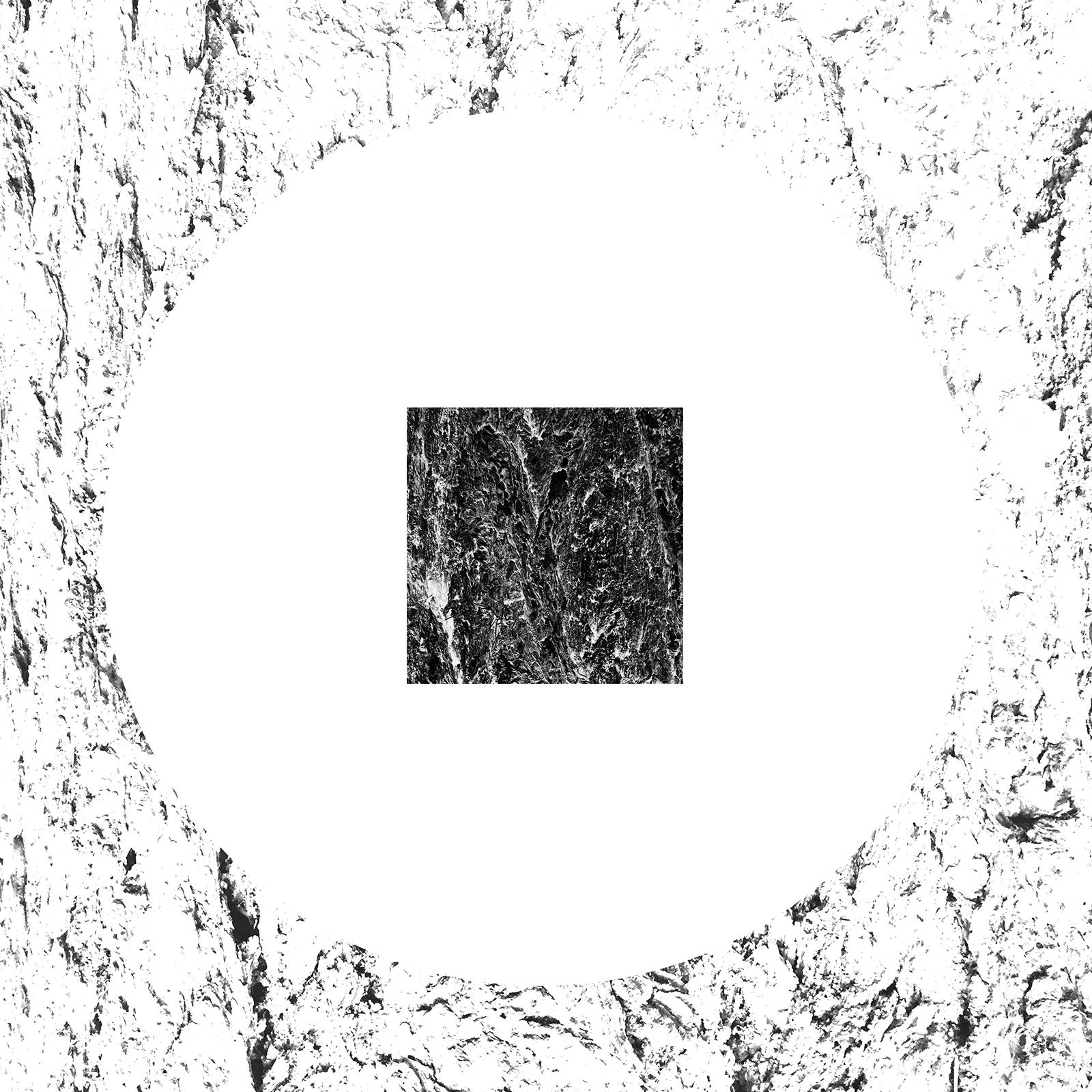 white-19.jpg