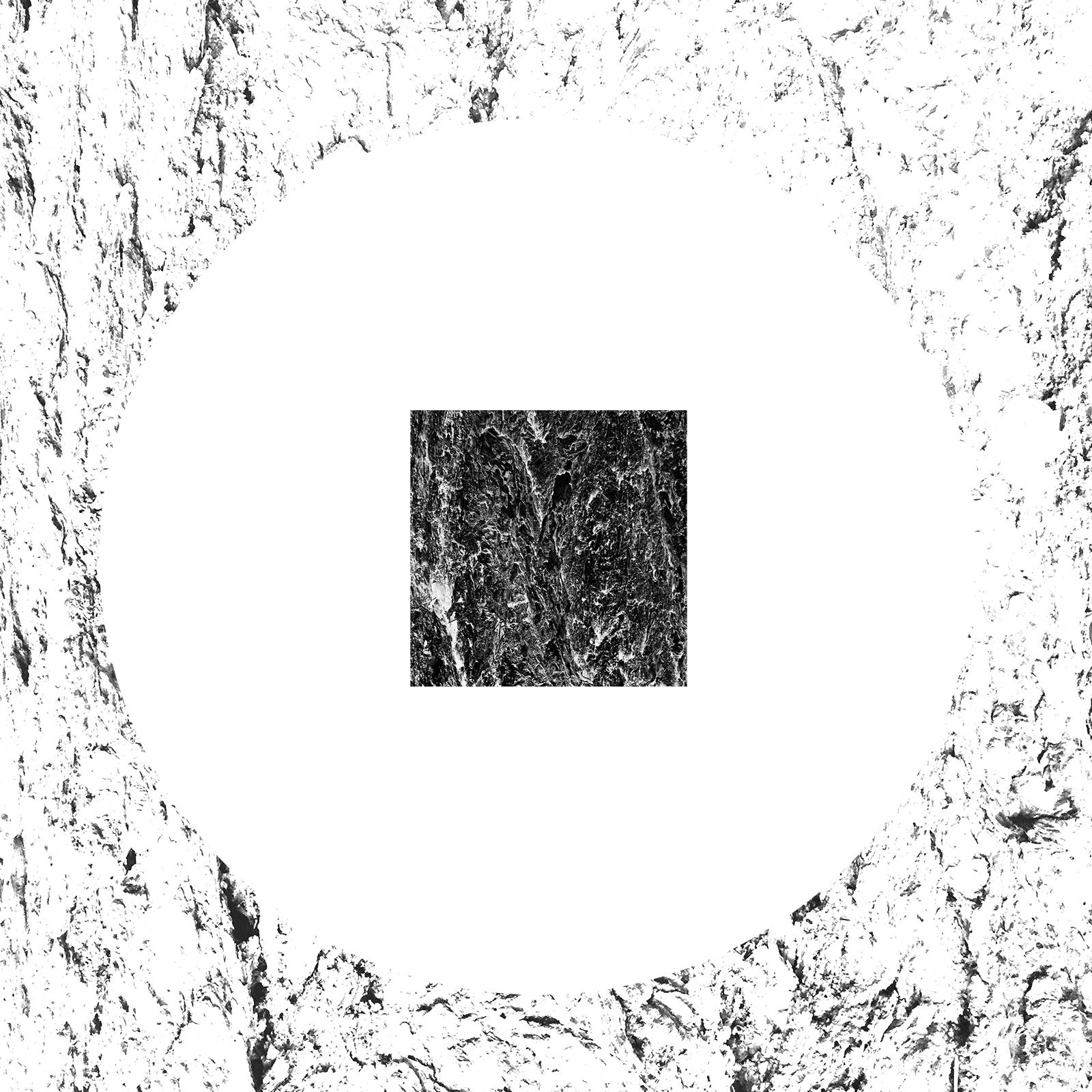 white-20.jpg