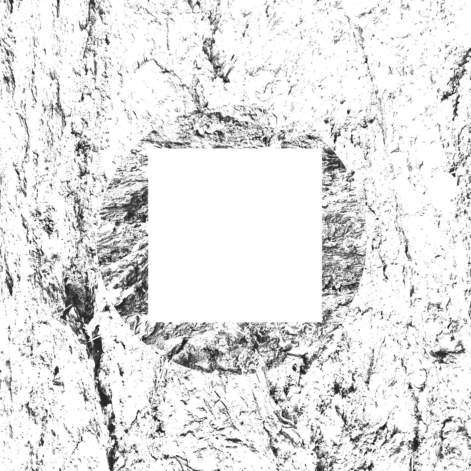 white-23.jpg