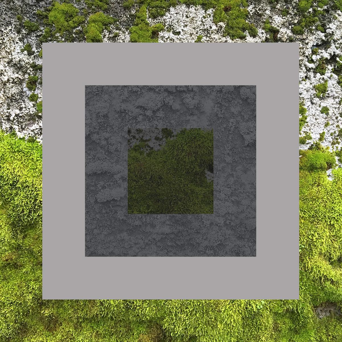 Vert-15.jpg