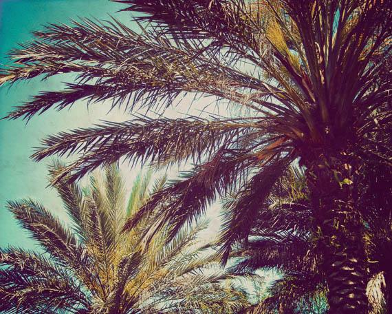 summer living_web.jpg