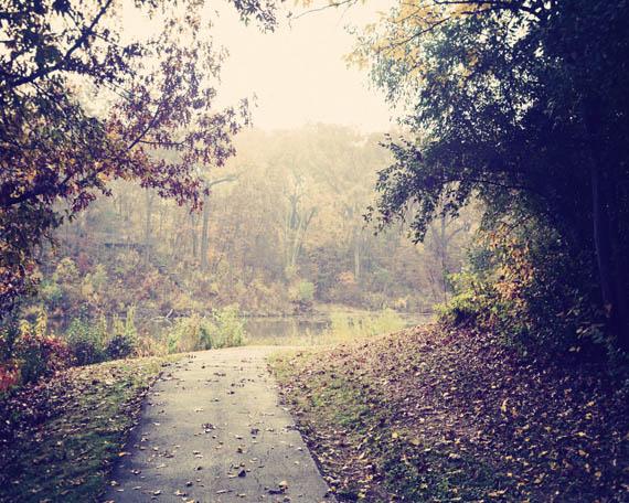 fall dream_web.jpg