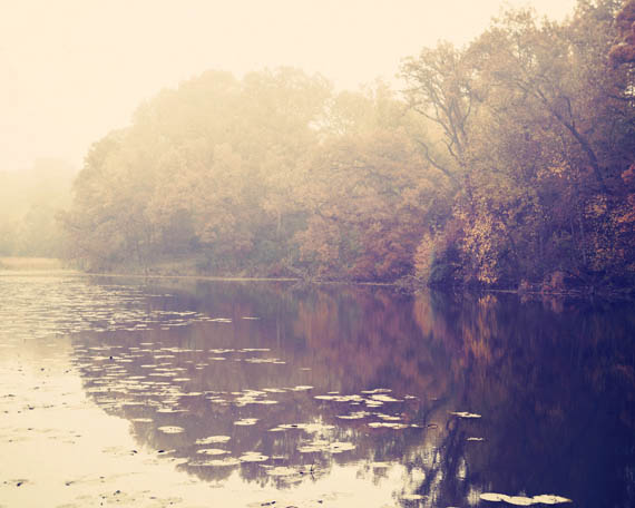 fall reflection_web.jpg