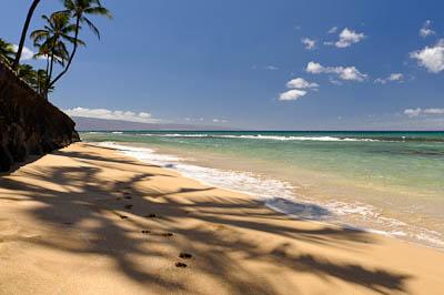 2010_0829_Maui -D700_407