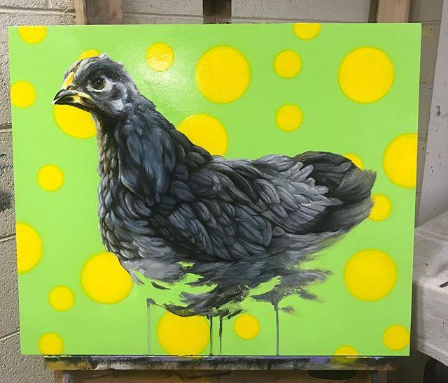 "Cochin Pullet 20"" x 22"" oil on board. #karljahnke #chickenart #painting #chickenpainting #contemporaryart #acrylicpainting #oilpainting #art#artist #artwork #happypainting #chickenart"