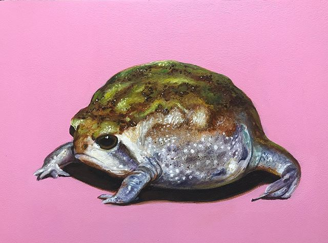 "Grumpy Frog 9"" x 12"" acrylic on panel #karljahnke #artist #art#artwork #painting #acrylicpainting #frog#frogart #frogpainting #contemporaryart"
