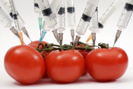 genetically-modified-food.jpeg