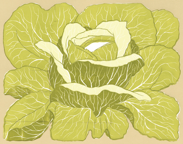 """BRASSICA OLERACEA"" BY ANDREW R. WRIGHT"