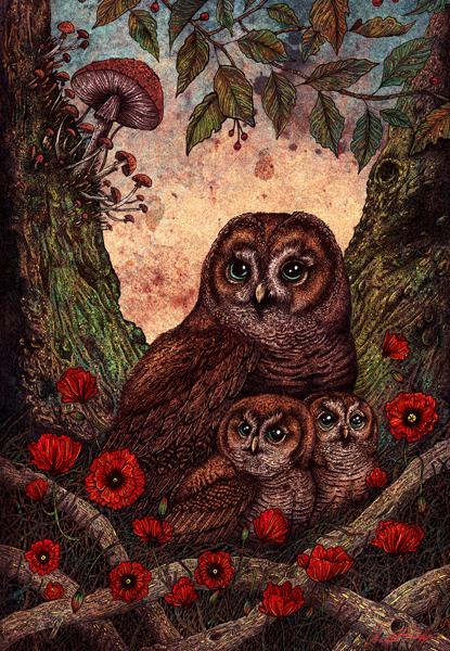 """""""TAWNY OWLETS"""" BY ANGELA RIZZA"""