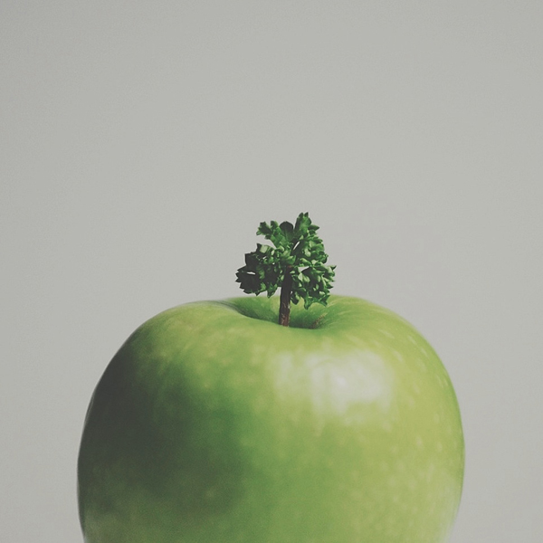 """Parsley on Apple Stem, One Tree Hill"" by Brock Davis"