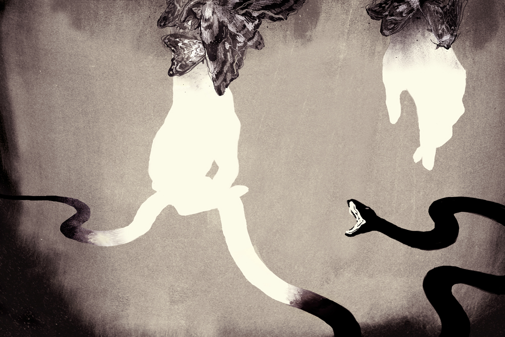 dusk trap print - miko.jpg