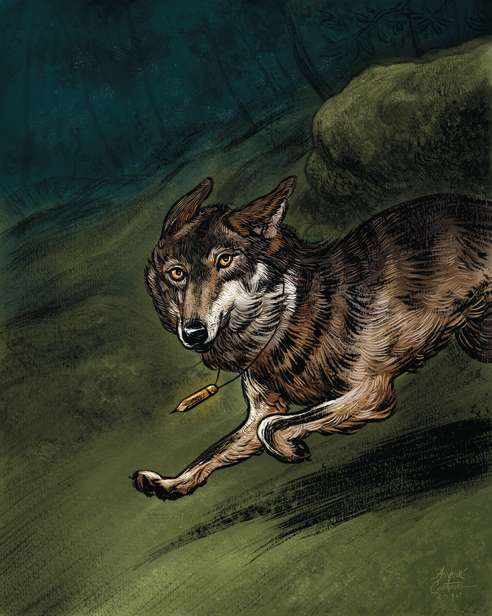 """""""The Iberian Wolf"""" by André Caetano"""