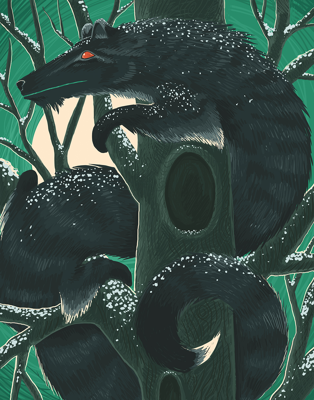 """The Northern Forest Mink"" by Kelsey King"