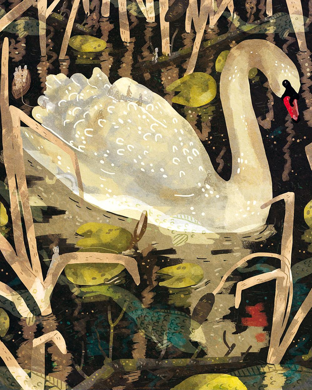 """""""Swan"""" by Lara Paulussen"""
