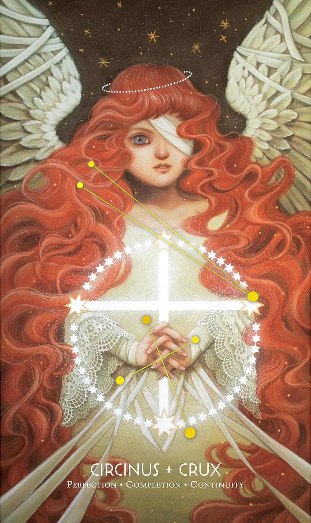 """Circinus + Crux"" by Phoenix Chan"