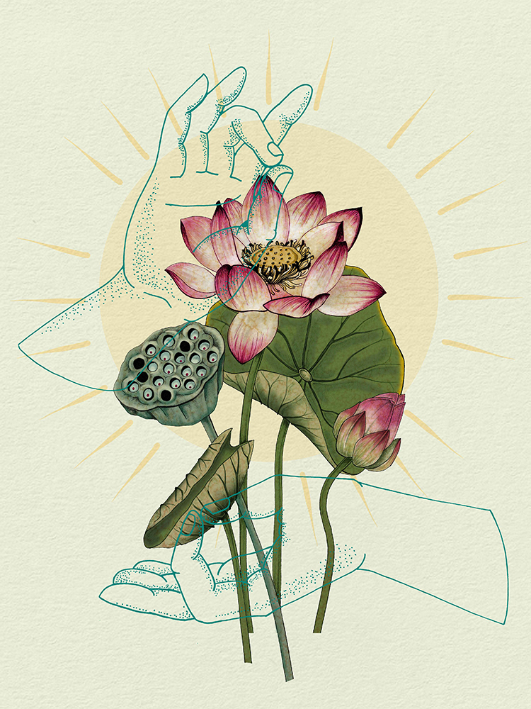 """""""The Sacred Lotus"""" by Marilyn Foehrenbach"""