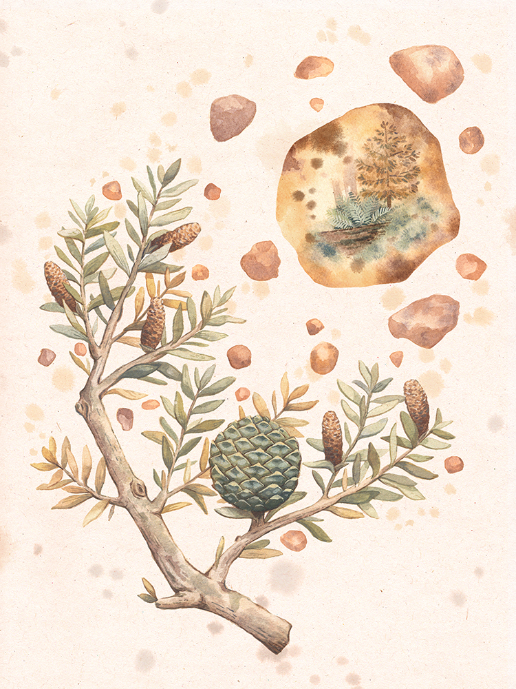 """""""Kauri, Resin, and Time"""" by Lauren Wilmshurst"""