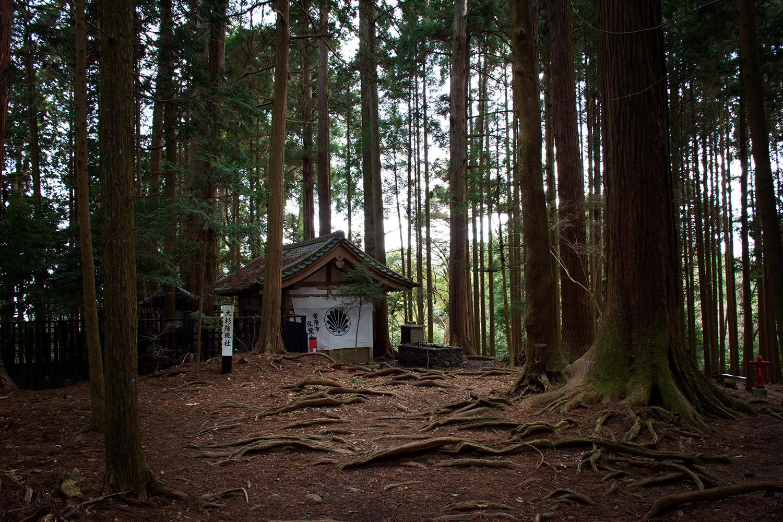 Tiny mountain shrine on our mountain hike. Photo by Chris Hajny