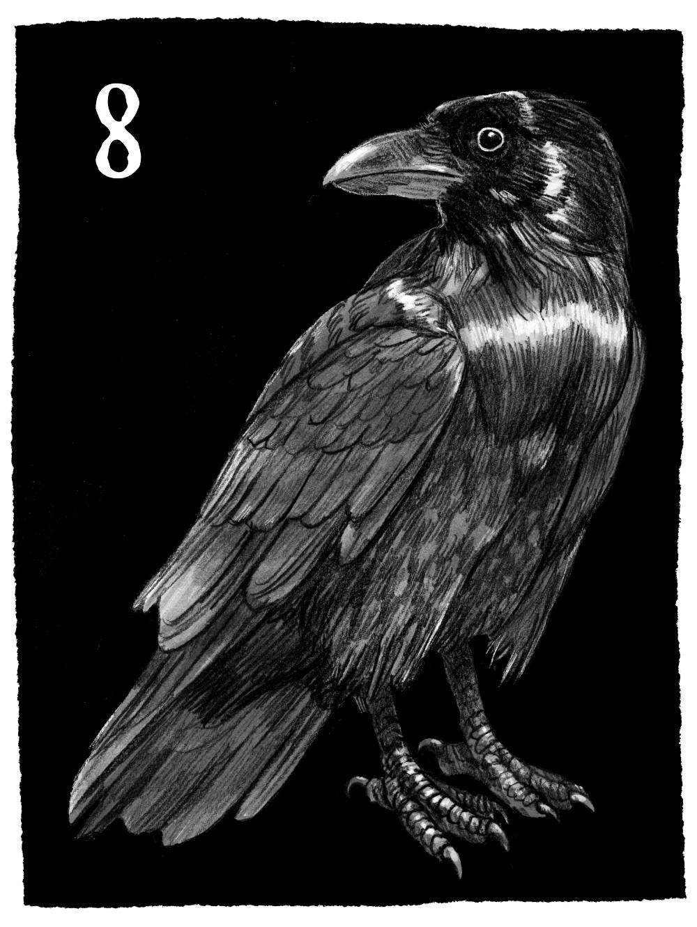 Joe Lillington Crow.jpg