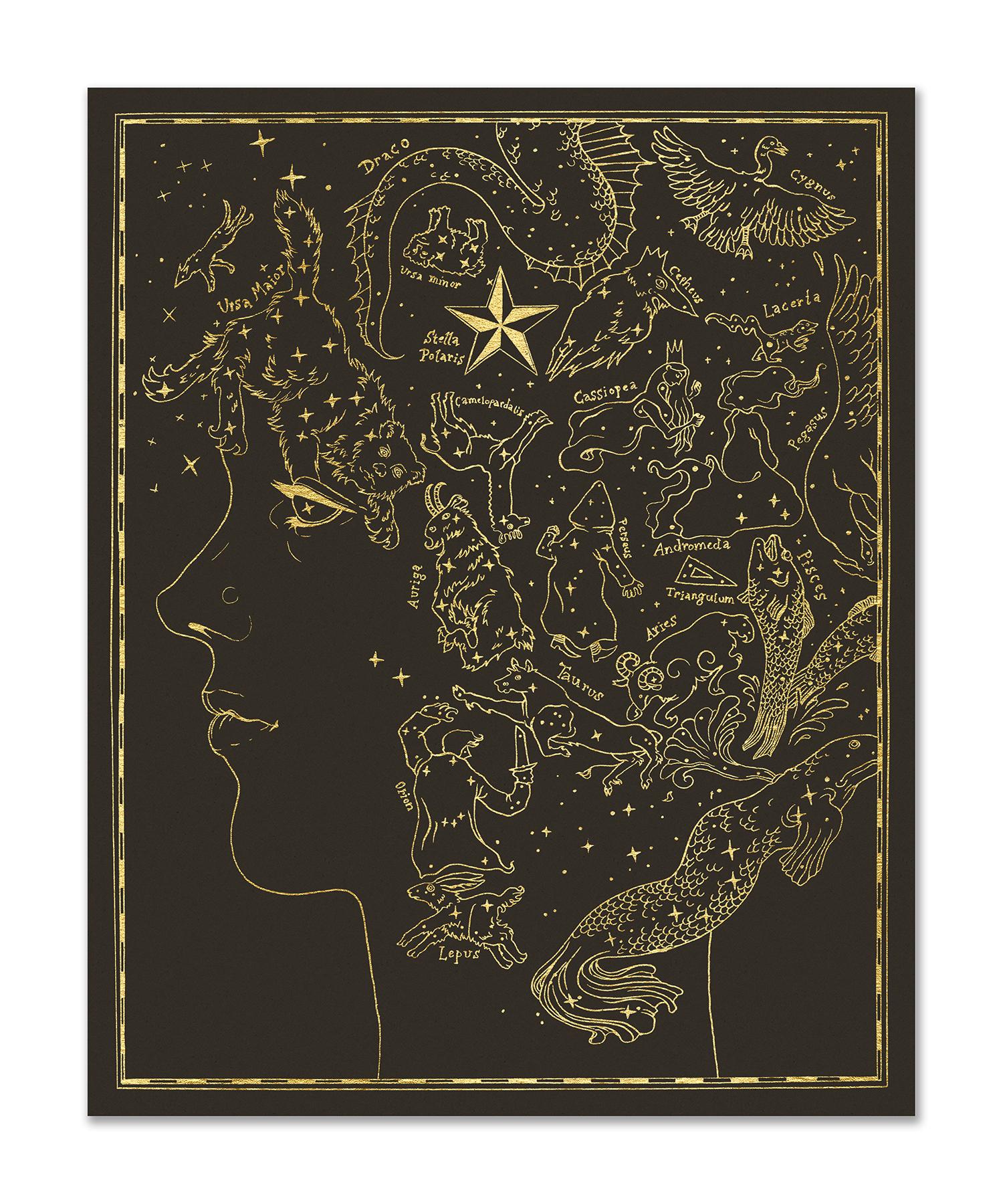 """Stella Polaris"" by Jana Heidersdorf"