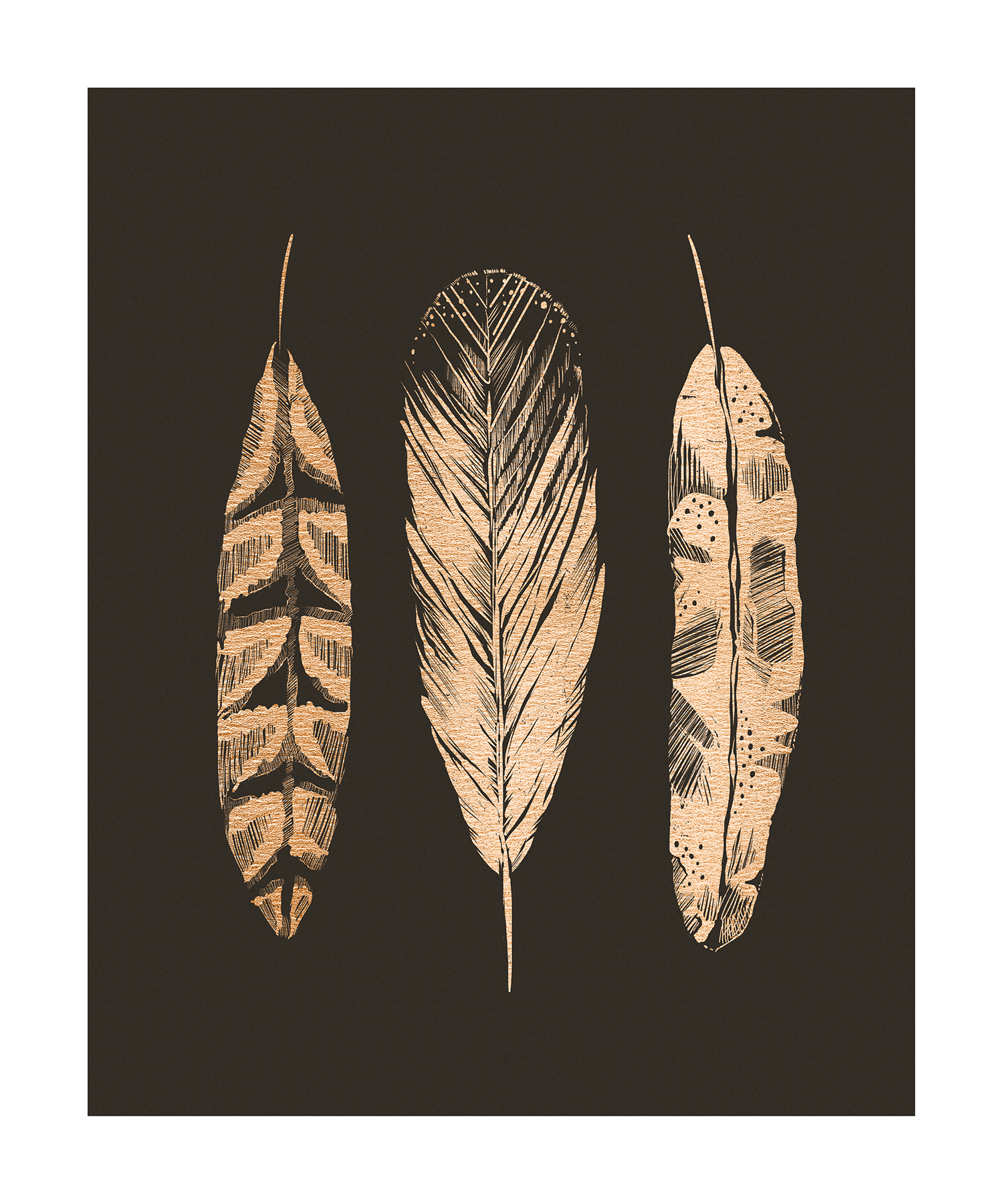 """""""Three Feathers"""" by Jeff Langevin"""