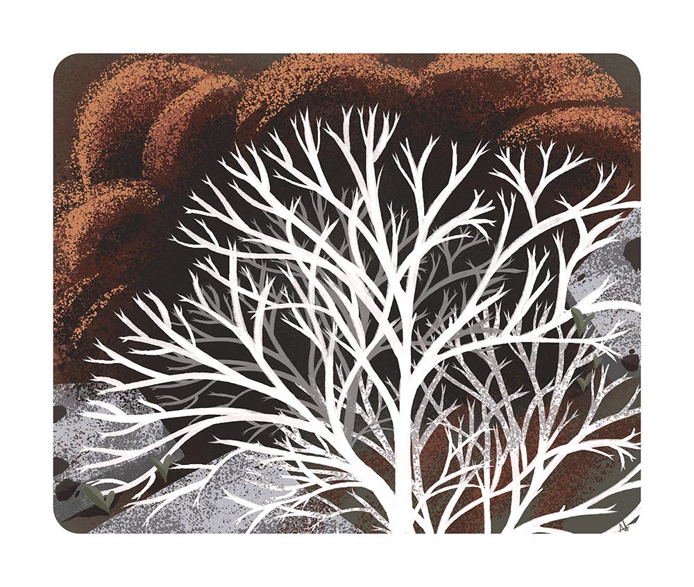 """Reindeer Moss"" by Alexandria Neonakis"
